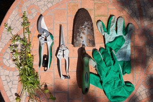Gardening Tools at Bruce Miller Nurseries, serving Dallas-Fort Worth Gardening, Landscaping and Tree-Planting Needs.